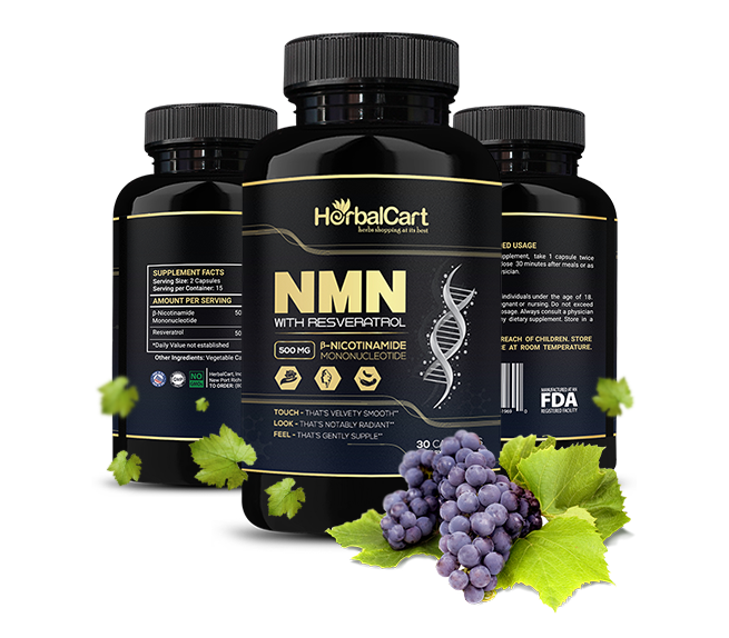 NMN Supplements