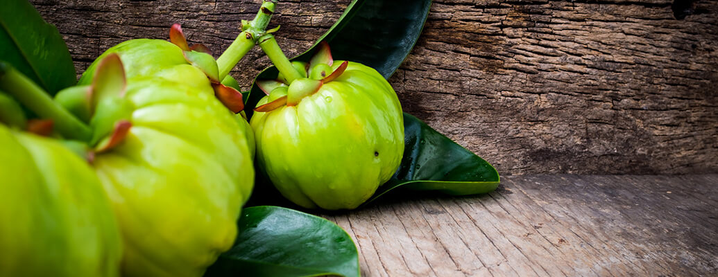 Why Garcinia Cambogia Extract is Used?